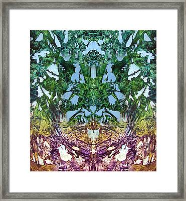 Decalcomaniac Play I Framed Print