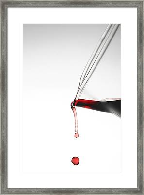 Decanter Framed Print by Frank Tschakert