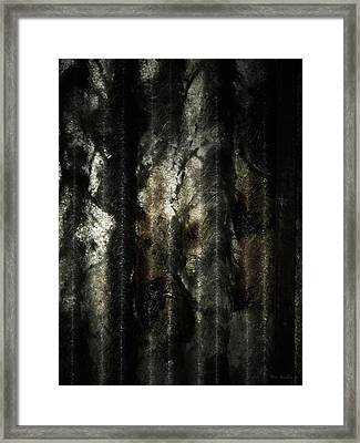 Decay Framed Print by Wim Lanclus
