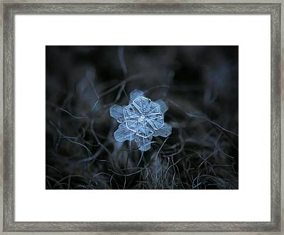 December 18 2015 - Snowflake 2 Framed Print