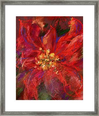 December Flower Framed Print