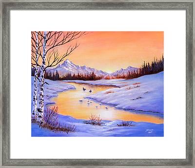 December Shimmer Framed Print by C Steele