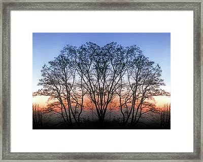 December Sunrise Framed Print by Jaeda DeWalt