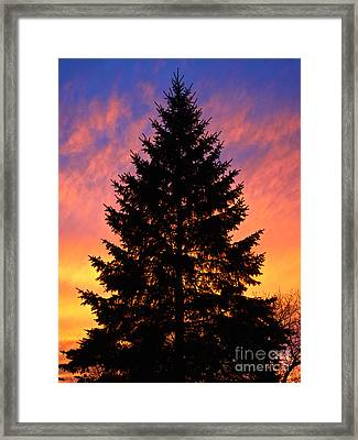 Framed Print featuring the photograph December Sunset by Mark Miller
