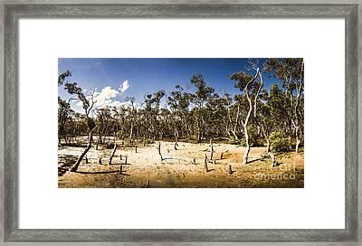 Deception Bay Conservation Park Framed Print by Jorgo Photography - Wall Art Gallery