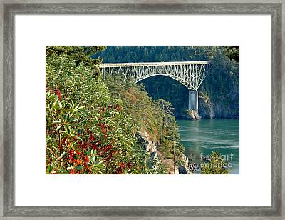 Deception Pass Bridge Framed Print
