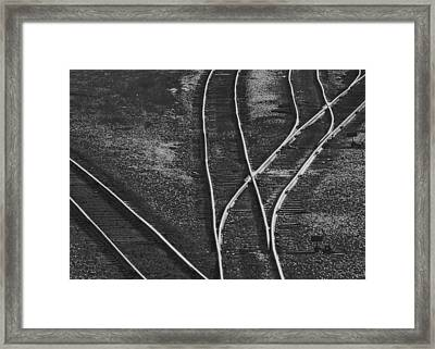 Decisions Framed Print