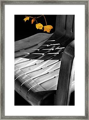 Deck Chair Shadows With Orange Autumn Leaves Framed Print