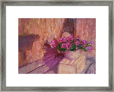 Deck Flowers #2 Framed Print by Brian Kardell
