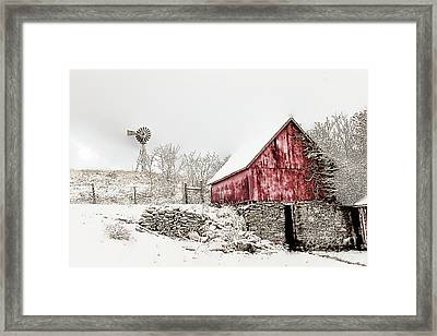 Decked In White Framed Print by Nicki McManus