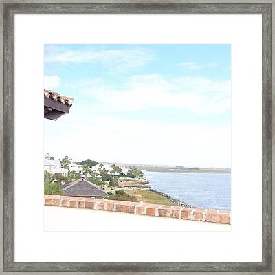 Decompressing Is A Must. Looking Framed Print