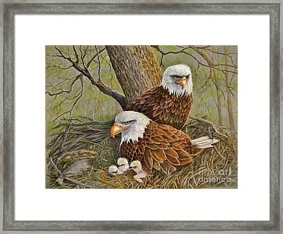 Decorah Eagle Family Framed Print
