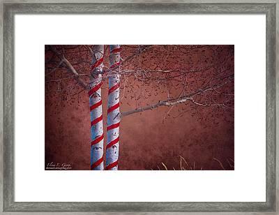 Decorated Aspens Framed Print by Elena E Giorgi