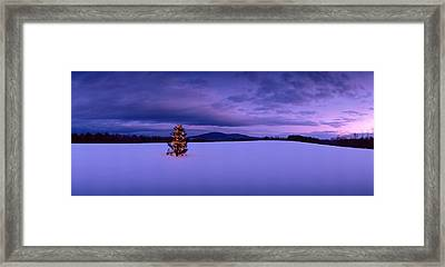 Decorated Christmas Tree In A Snow Framed Print by Panoramic Images