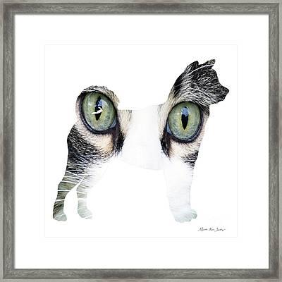 Decorative Mixed Media Abstract Husky O33117c Framed Print by Mas Art Studio