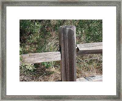 Framed Print featuring the photograph Decorative View - Central Texas Fence Line by Ray Shrewsberry