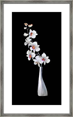 Decorator Set-orchids Silver Framed Print by Brent Rowlett