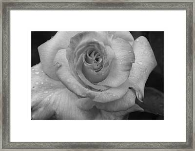 Deep And Wet Framed Print by Sonja Anderson