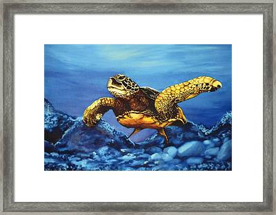 Deep Blue Framed Print by Kathleen Kelly Thompson