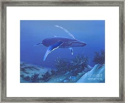 Deep Blue Framed Print by Michael Allen