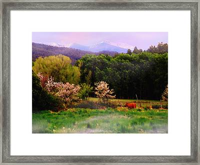 Framed Print featuring the photograph Deep Breath Of Spring El Valle New Mexico by Anastasia Savage Ealy