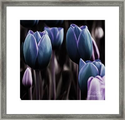 Deep Calla Flower Framed Print by Gull G