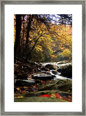 Framed Print featuring the photograph Deep Creek Mountain Stream by Bob Decker