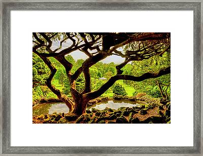 Deep Cuts Gazebo Between The Tree Branches Framed Print