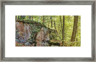 Deep Dark Forest Framed Print