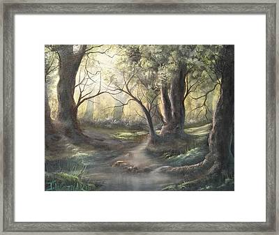 Deep Forest  Framed Print