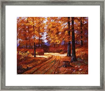 Deep Forest Road Framed Print by David Lloyd Glover
