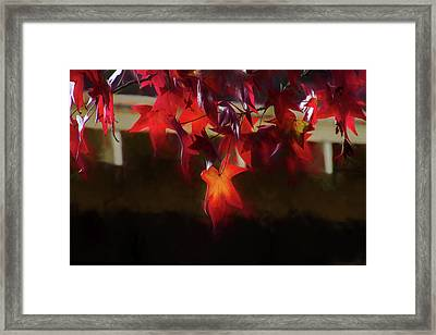 Deep In Red Framed Print