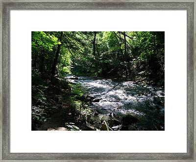 Deep In The Gorge Framed Print