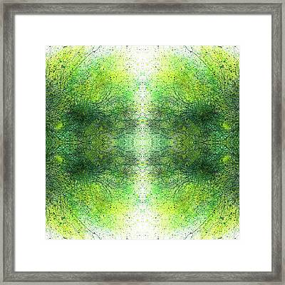 Deep Intuitive Understanding Of The Akashic Records #1363 Framed Print by Rainbow Artist Orlando L aka Kevin Orlando Lau