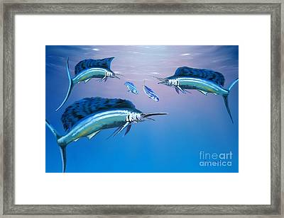 Deep Ocean Framed Print by Corey Ford