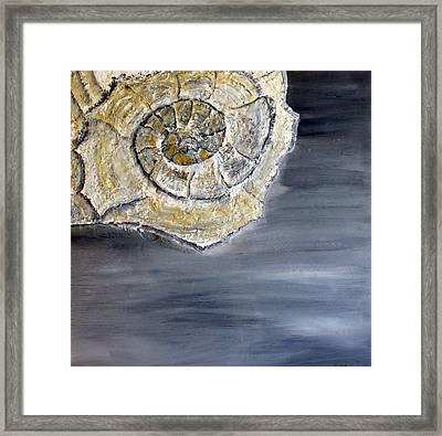 Deep Ocean Seashell Framed Print