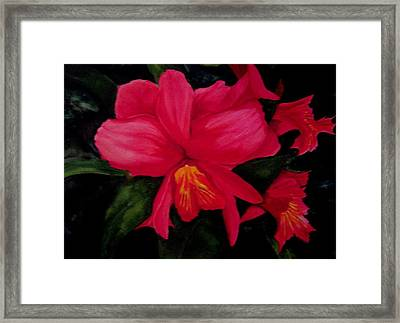 Deep Red Framed Print by Susan Tilley