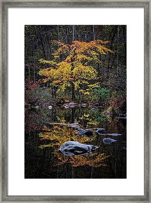 Deep Water Reflections Framed Print