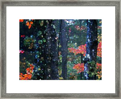 Deep Woods Mystery Framed Print by Dave Martsolf