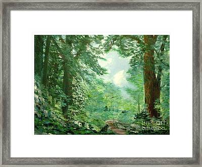 Deep Woods Path Framed Print by Hal Newhouser