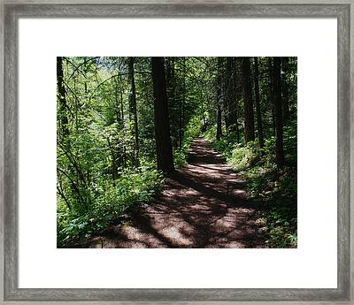 Framed Print featuring the photograph Deep Woods Road by Ben Upham III