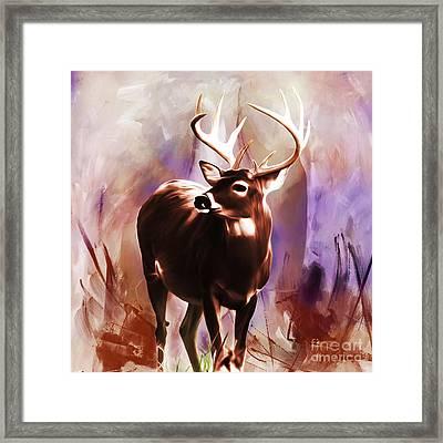 Deer 493 Framed Print by Gull G