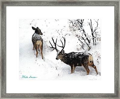 Deer And Snow 1 Framed Print by Marla Louise