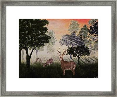 Deer At Dawn Framed Print by G H Hisayasu