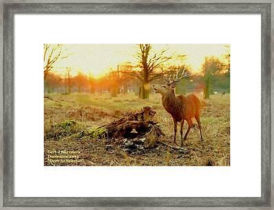 Deer At Sunrise H A Framed Print