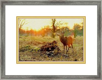 Deer At Sunrise H A With Decorative Ornate Printed Frame. Framed Print
