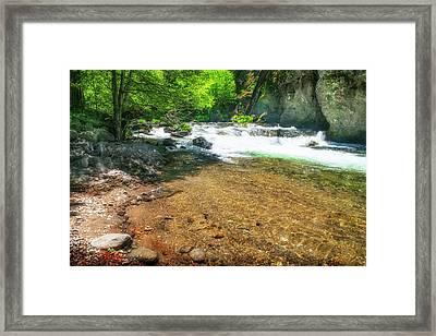 Deer Creek Trout Pool Framed Print by Frank Wilson
