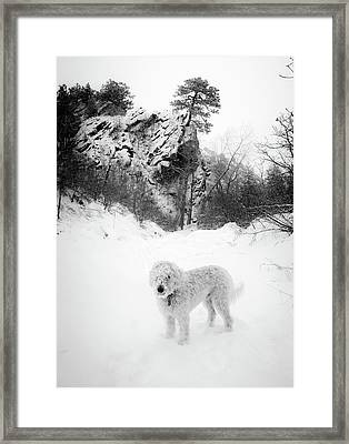 Deer Creek Valley Park In Winter Framed Print