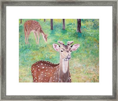 Framed Print featuring the painting Deer In Woods by Elizabeth Lock