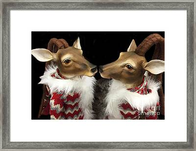 Deer Reindeer Kissing - Christmas Holiday Deer - Reindeer Deer Holiday Art Framed Print